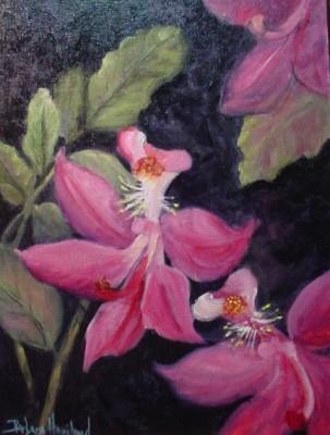 swamp pink floral