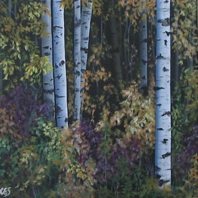 Birch Beauty by CES