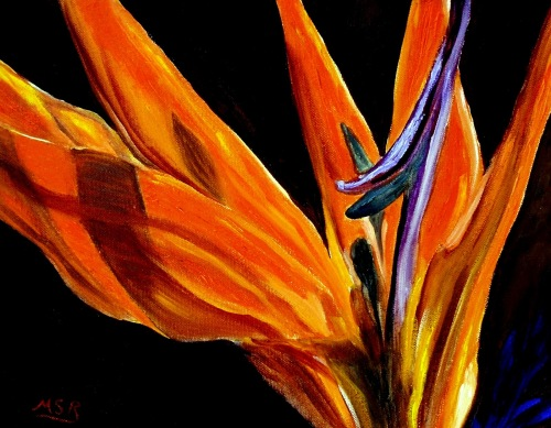 Bird of Paradise I by Maria Soto Robbins