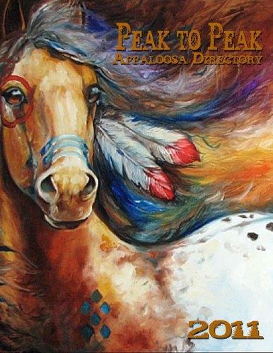 Spirit Warrior by Marcia Baldwin