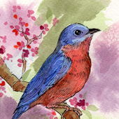 Spring Blue Bird by Patricia Christsen