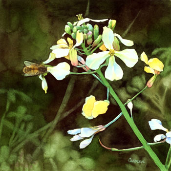 Bee and Mustard by Carmen Keys Medlin