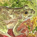 Mug Frog by Theodora Demetriades