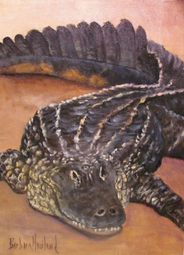 Alligator by Barbara Haviland