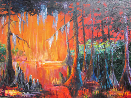 Bayou Fire by Barbara Haviland