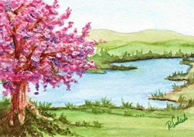 Cherry Blossoms by the Lake by Rebecca Salcedo