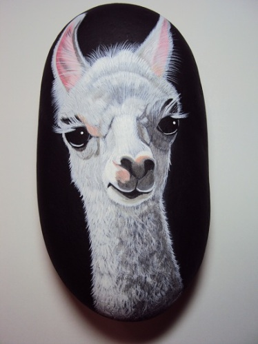 Llama by Maggie Stoller
