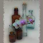 Orchid with Bottles by Carolyn Schiffhouer