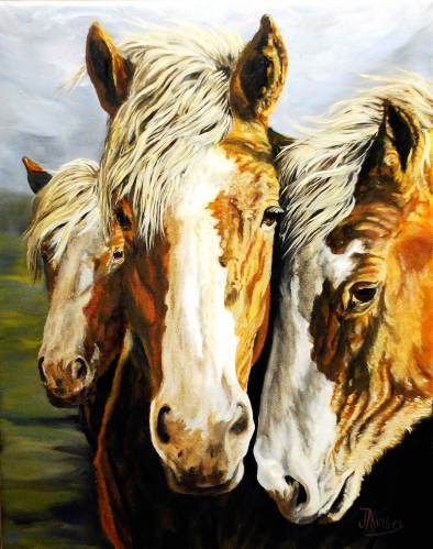 Three Amigos by Jacqueline Kinsey