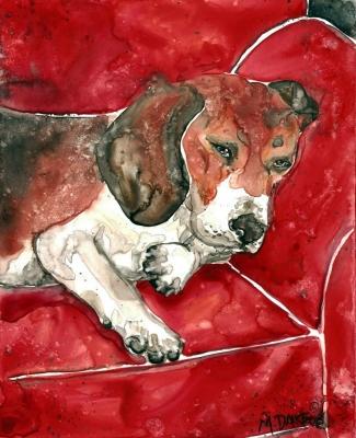 Red Chair Beagle by Melinda Dalke