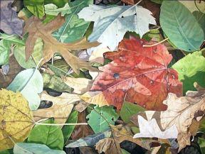 Fall by Harlan