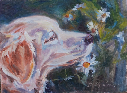 Stop and Smell the Daisies by Carol DeMumbrum