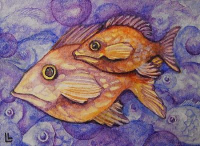 One Fish Two Fish by Lindi Levison