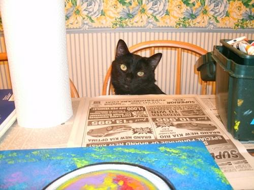 Juli Cady Ryan's cat Francis