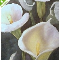 Calla Lilies by Barbara Haviland