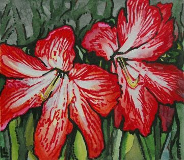 Holiday Amaryllis by Lindi Levison