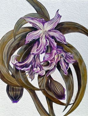 Wild Blue: Amaryllis by Alma Lee