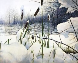 Winter Cattails by Harlan