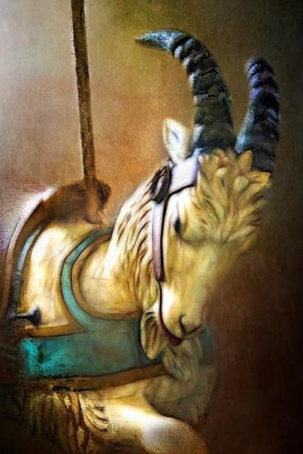 Carousel Goat by Carolyn Schiffhouer