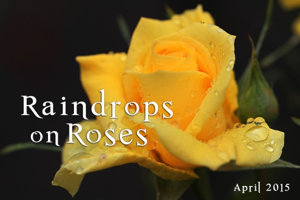 Raindrops on Roses (and other things)